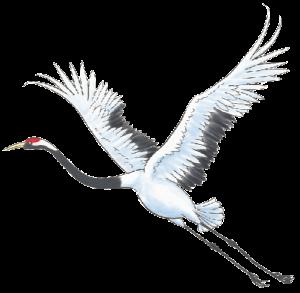 crane-art-low-res sm