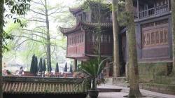Tea Garden at Jain Fu Gong