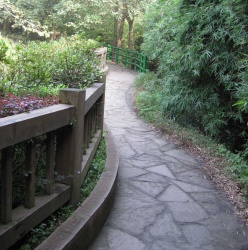A beautiful pathway in the park